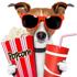 RapaduraCast 494 – Analisando os 9 indicados a Melhor Filme no Oscar 2017